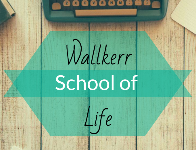 Everyone Needs a School of Life!